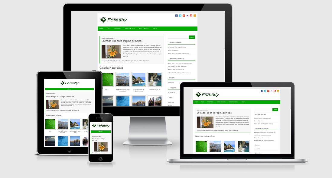 Crear capturas de pantalla de plantillas y p ginas web Crear website
